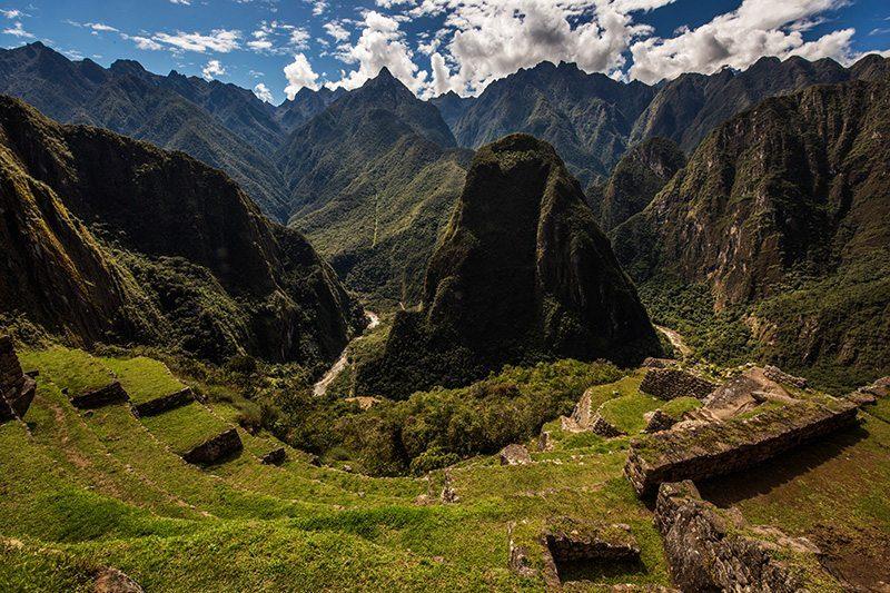 A Billion Lives - Mountain Jungle