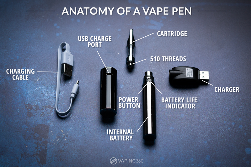 Parts of a vape pen anatomy info graphic