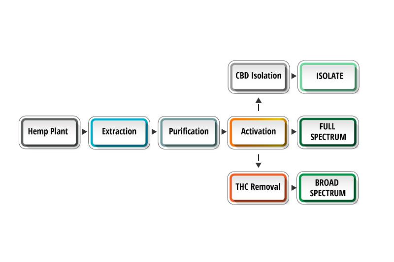 cbd isolate vs full spectrum cbd vs broad spectrum cbd flow chart