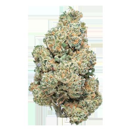 Frosted Kush CBD bud